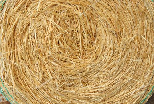 straw bale background, texture