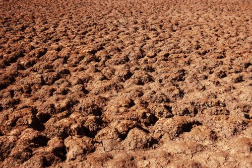 hot dry desert in the baking red sun