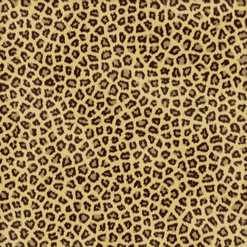 spotted leopard or jaguar skin or fur