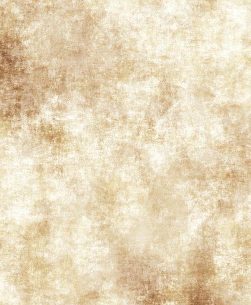 grungy rough old worn parchment paper
