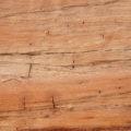 excellent closeup of a cut tree log wood texture