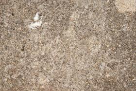 stone or rough concrete background texture