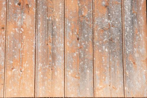 orange wooden wall background texture