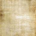 free old brown vintage parchment paper texture