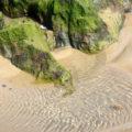 algae rock pool