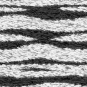 Seamless zebra fur texture